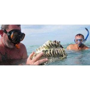 Obrázok 2 k Kniha - O rybách a rybároch