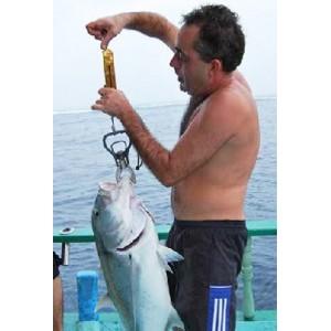 Obrázok 5 k Kniha - O rybách a rybároch