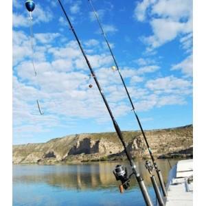 Obrázok 8 k Kniha - O rybách a rybároch