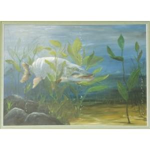 Olejomaľba originál - Šťuka v rastlinách